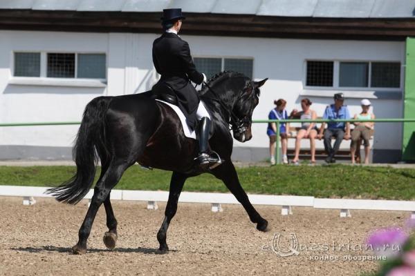 федерация конного спорта