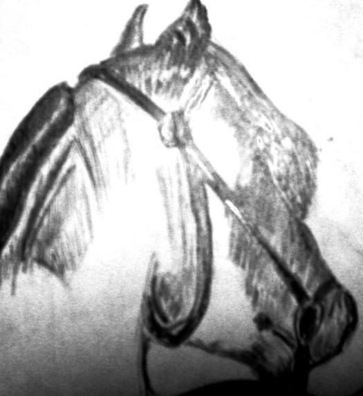 портрет лошади)))