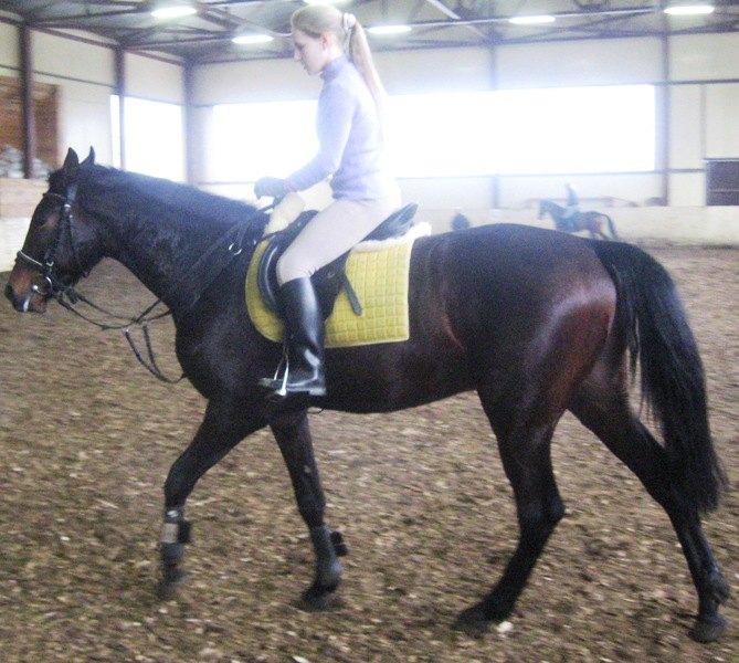Я и моя лошадь