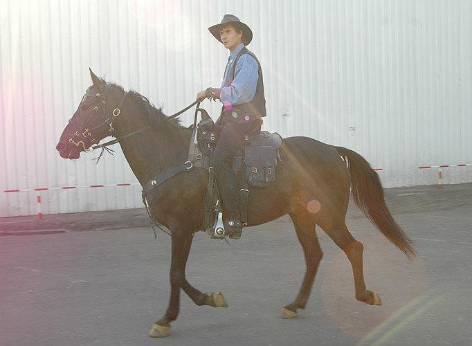 Лучезарный ковбой