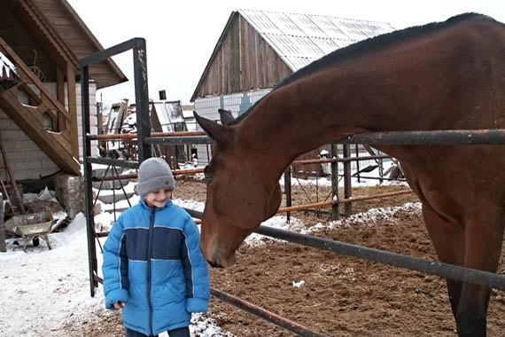 Впервые лошадка так близко и такая большая!