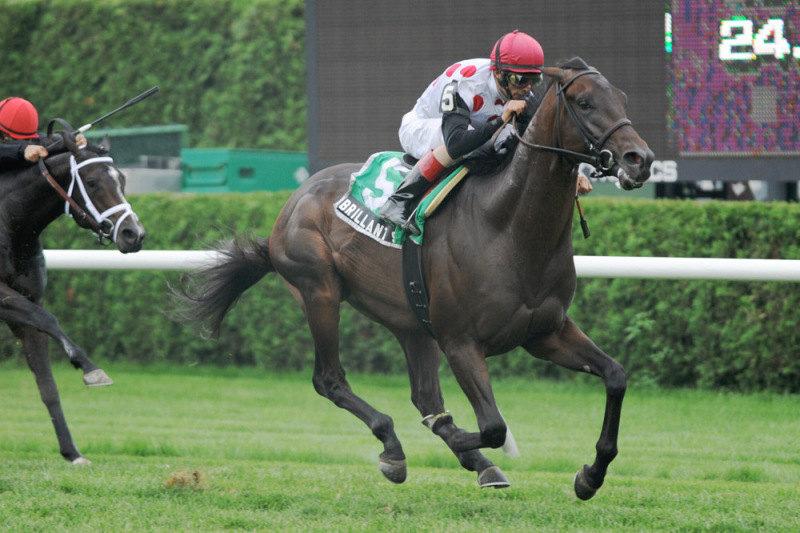 Ипподром Saratoga 2011 год, скачка Saranac Stakes