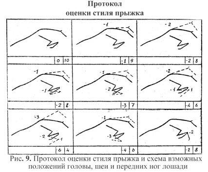 Протокол оценки стиля прыжка и схема возможных положений головы, шеи и передних ног лошади.