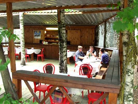 Летний бар  в тени деревьев
