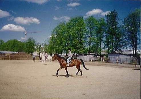 Белая грива 1998 г.