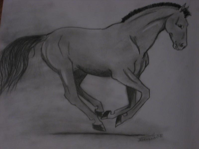Мой новый рисунок...простой карандаш...