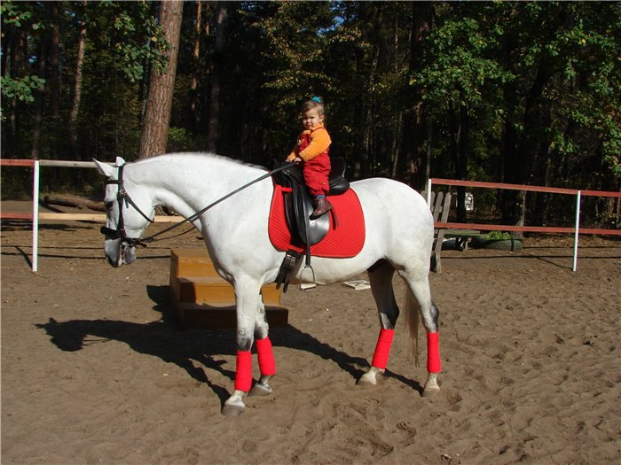 Сестричка Иолнка на коняге Дамбай
