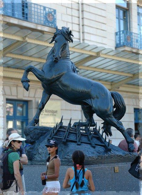 ...неукротимого коня. Франция