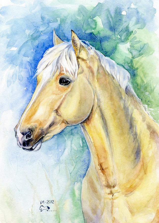 Акварель; владелец лошади Кристина Купряшкина