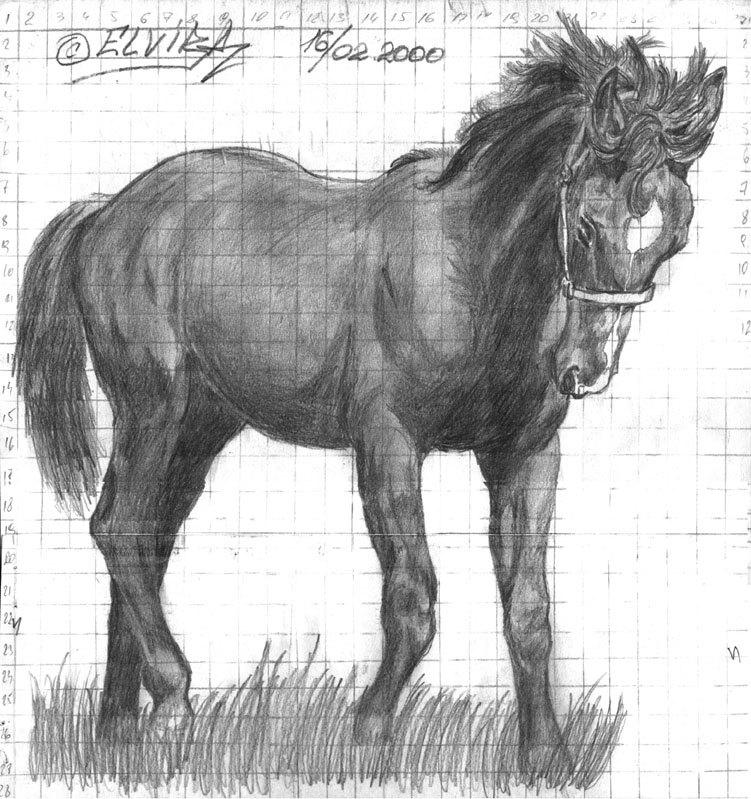 2000 г. Рыженький коник. срисовка под клеточку