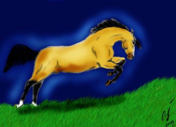 моя старая работа в фотошопе.Вообще нарисована на заказ для моей подруги.Коня в реальности зовут Танцор,он арабо-пони.Но вроде как тут похож на Араба чистокровного))