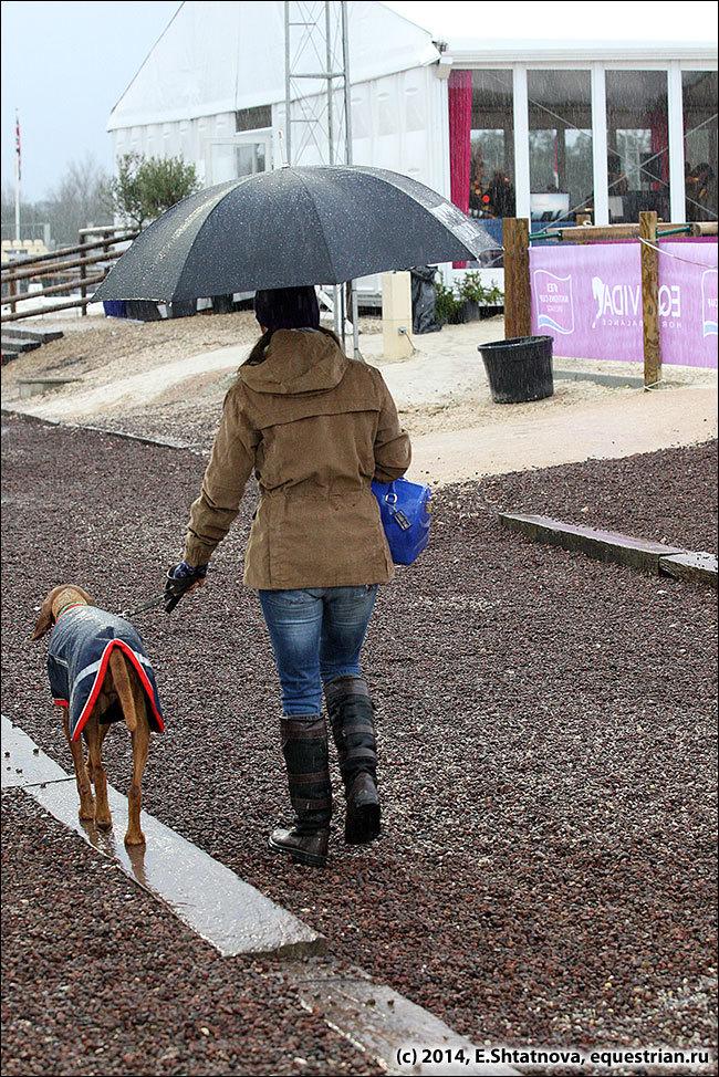 На собачку зонтика не хватило