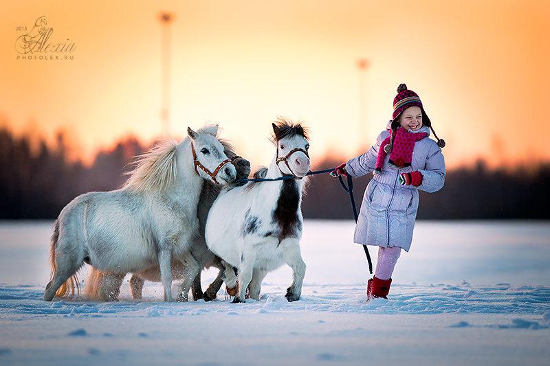 Миниатюрные лошади,матки фермы и их маленькая хозяйка.Фото Алексии Хрущевой.