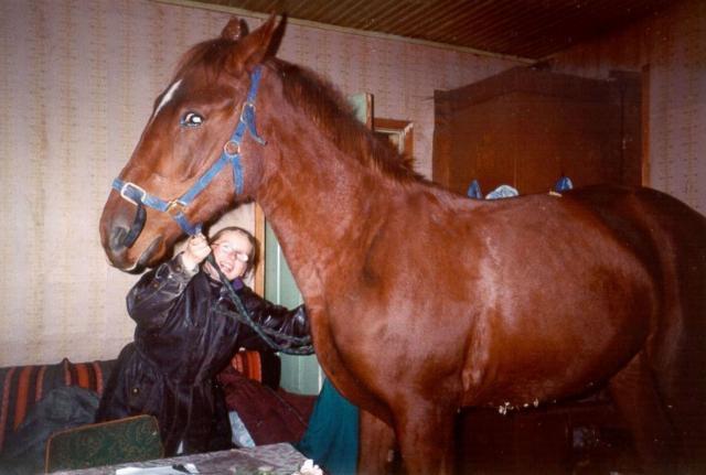 Девушка поспорила с подругой...что она не приведёт лошадь в дом свой...а вот и привела...