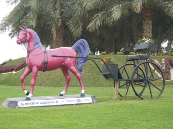 Конный Дубай
