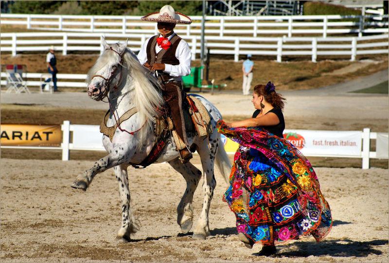 Всемирные конные игры