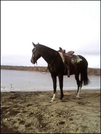 сегодня на озере