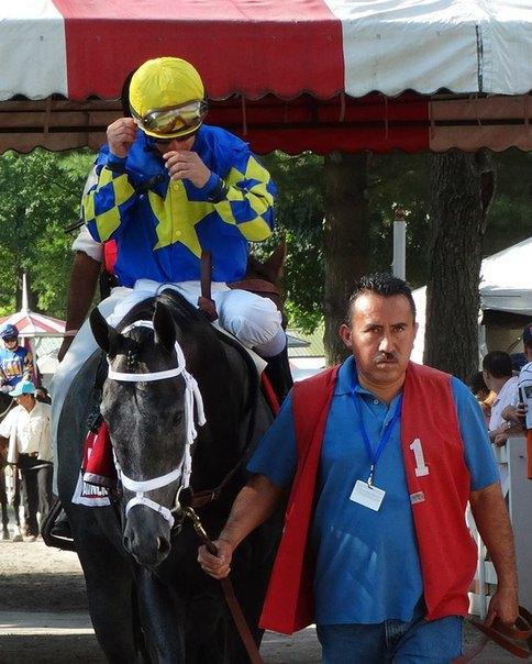 Ипподром Saratoga 2013 год, скачка Sanford Stakes.