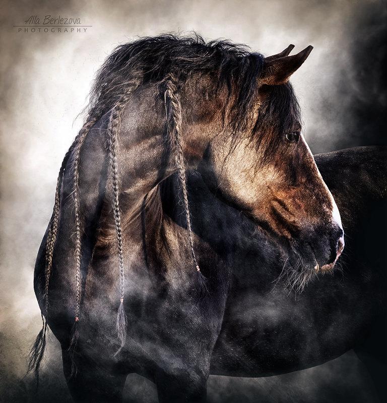 Лёлё, владелец лошади Сергей Ворон