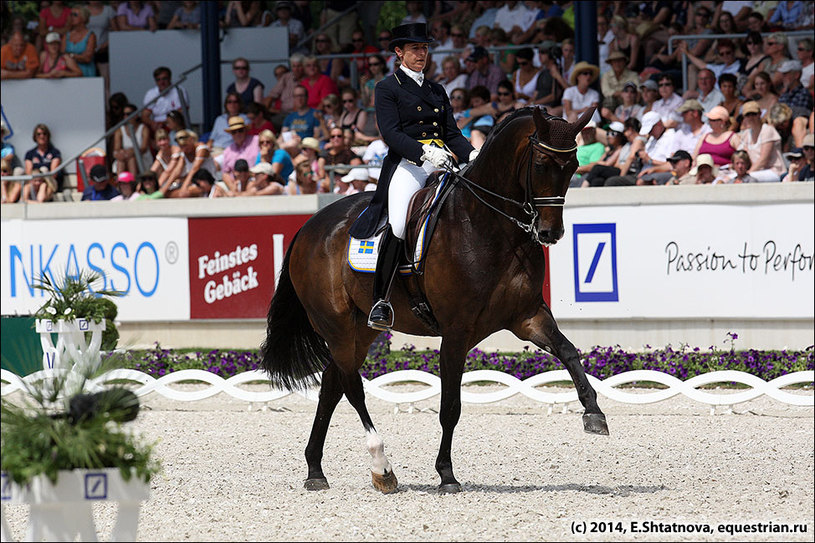 Silfven Tinne Vilhelmson / Don_Auriello