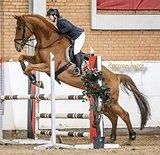 Конь гибкий, хорошо себя показывает, не испорчен.