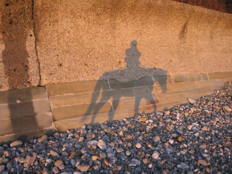 а как еще сфотографировать себя на лошадке, если ездиишь в одиночестве