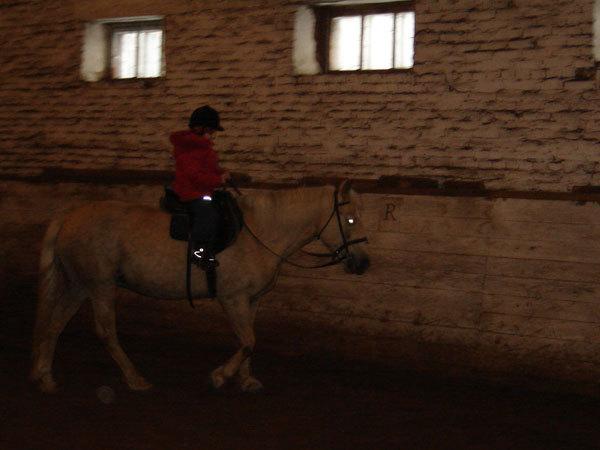Извеняюсь за качество. Ей всего 6, а она управляется с лошадьми получше некоторых взрослых!!!