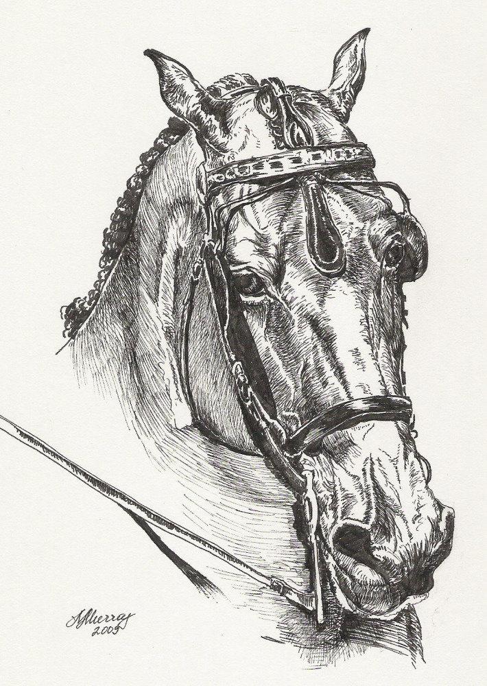 Рисунок с фотографии, выполнен спец. ручкой, почти как перо, но мягче.