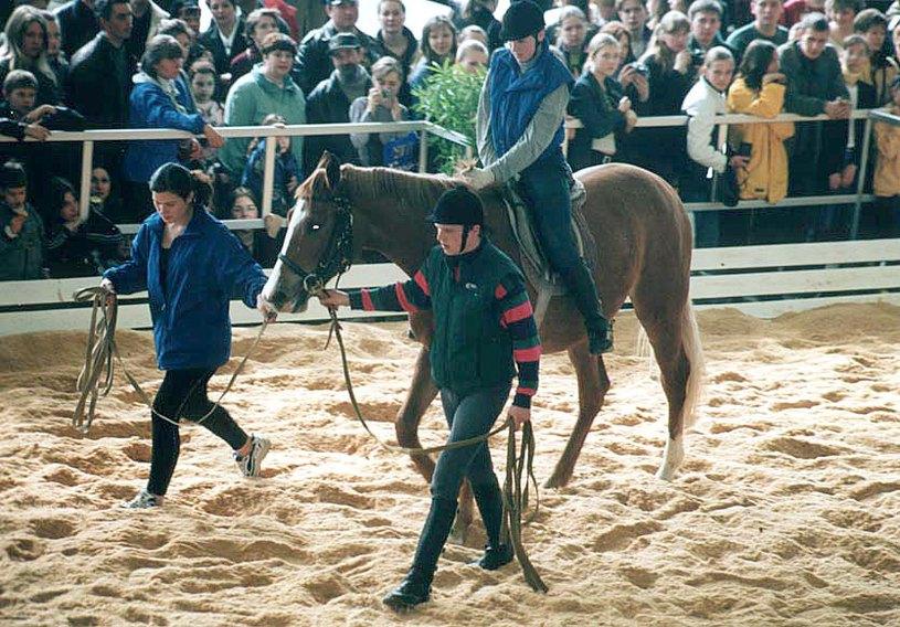 Показательный тренинг Заездка под седло молодой лошади. Племконюшня Русско-Высоцкое.