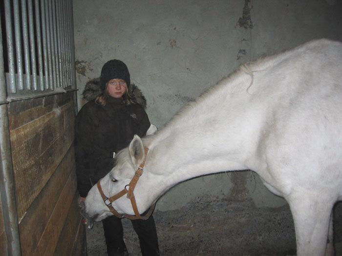 Эльба в деннике с Таней
