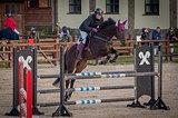 Аренда мерина, конкура 100-110см, Москва (ЮЗАО)