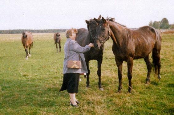 и опять с лошадками:-))