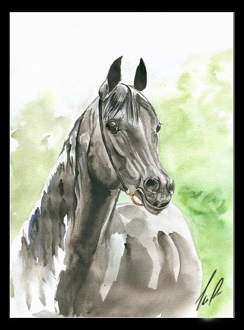 акварель, выполнена сестрой Олей. рисунок с фото Викаруса;)