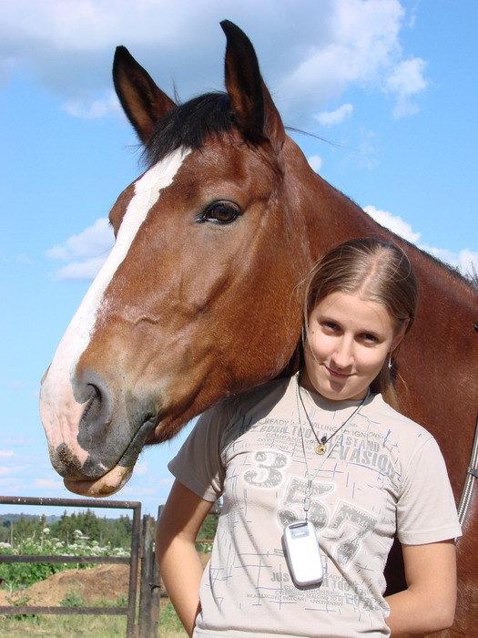 о лете.. о дружбе.. о любимой лошади, погибшей в начале ноября..просто о ней. Катушка, Катёна, Катрин..и Я. Как счастливы мы были..а теперь вечная память..