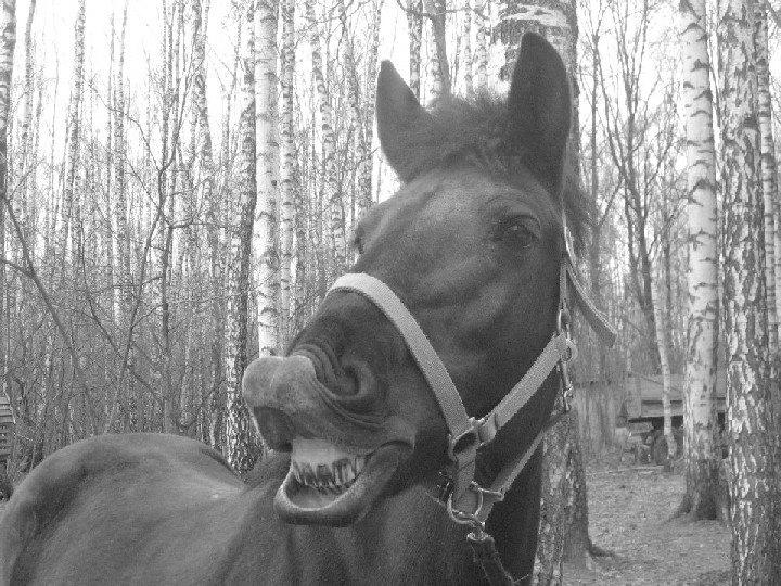 улыбаемся)