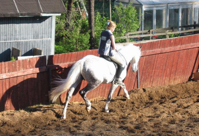 даю коню иногда отдохнуть от трензеля
