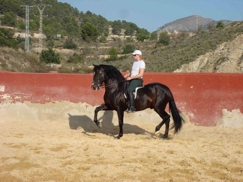 Тренировка в Испании на базе лучшего в Испании рохенеодора Анди Картохена.