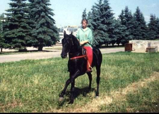 Гуляем в Курске. Конь принадлежит Каджане Кантемировой (дочке Алибека Кантемирова). Кабардинская порода.