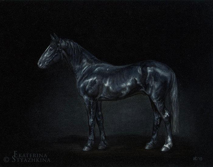 Портрет орловского рысака Жизнелюба. Размер 20х25 см. Черная бархатная бумага, пастель.