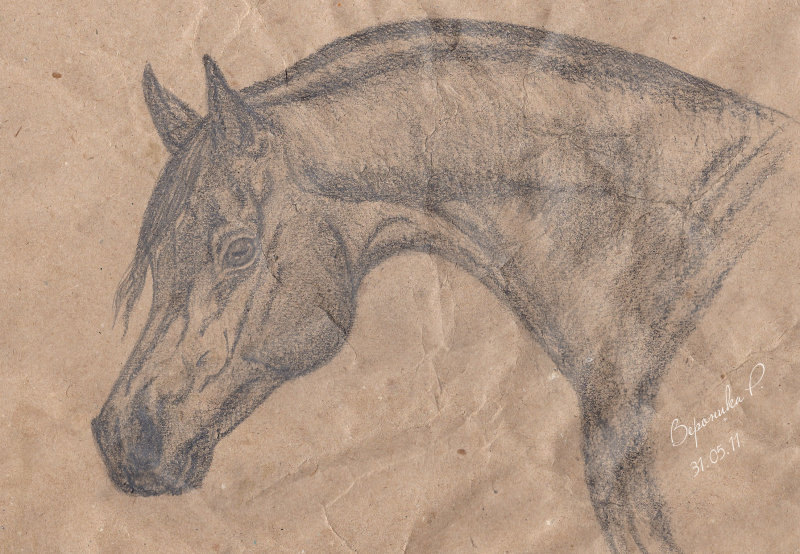по фото http://www.equestrian.ru/my/6841/favorites/159574