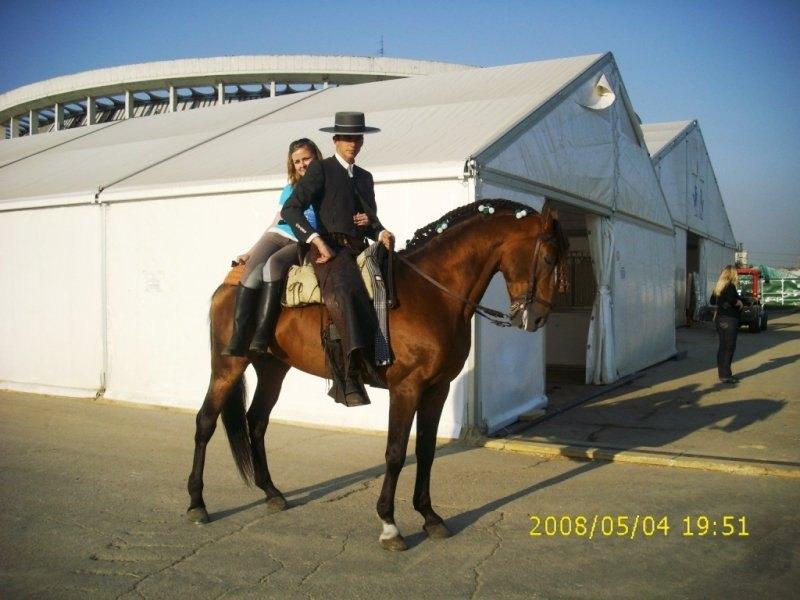 ВКИ 2008, конь Каландрио, испанец Хоакин
