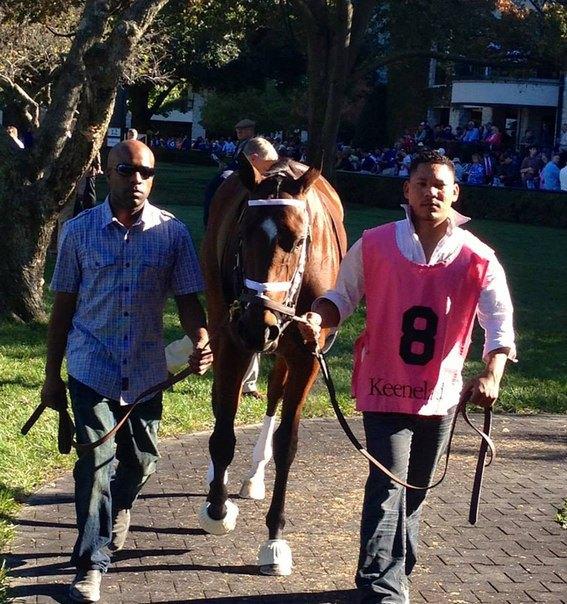 Ипподром Keeneland 2013 год, скачка JPMorgan Chase Jessamine Stakes - Gr. 3
