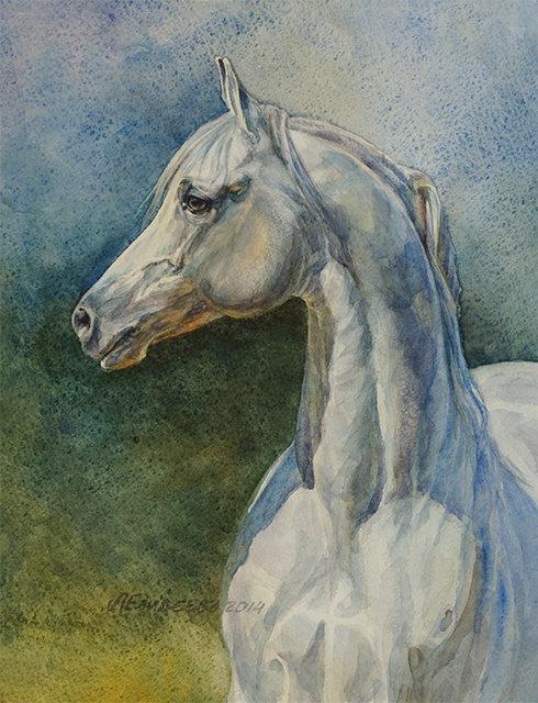 """Голова арабской лошади"".Бумага,акварель,29х23.По фото TROYAHORSE, на фото арабский жеребец Гнев (Наган-Гусарка),1997."