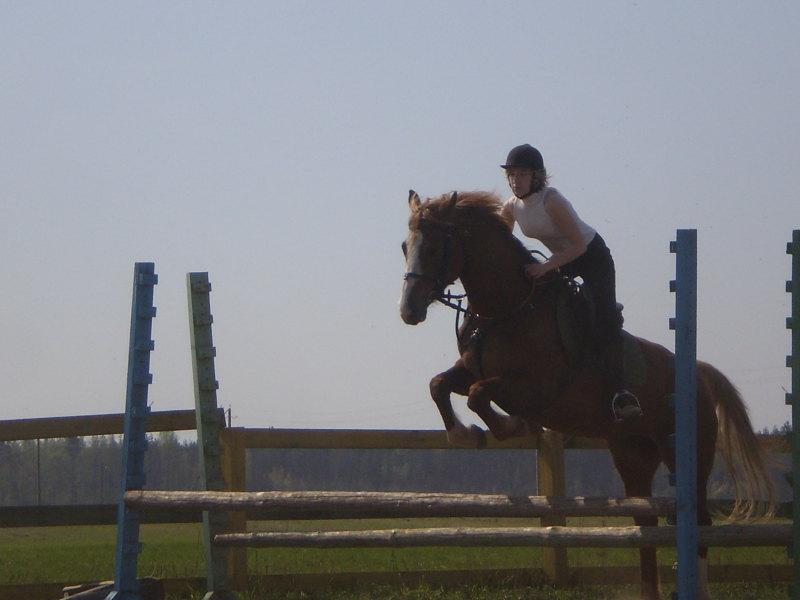 Девочка та же, что и на предыдущей фотографии только на своей лошади.