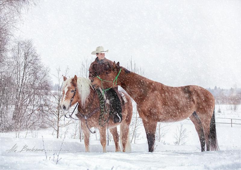 Зимний трейл в ЦКО Караван ⛄  Дария Бойцова, Flocke и Sunny (владелец Белоус Екатерина)