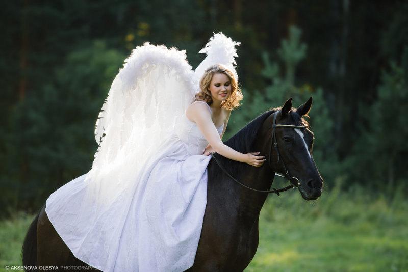 Лошадь - человеку крылья!