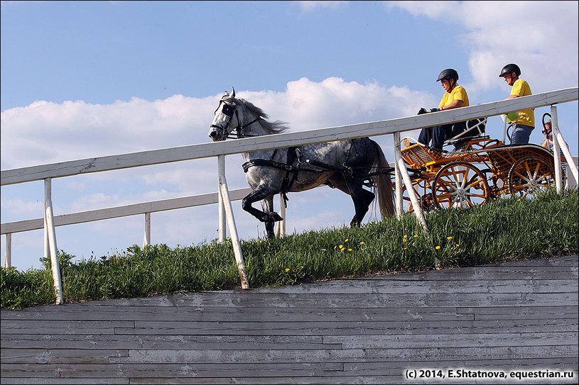 Бешнова Людмила / Пунш