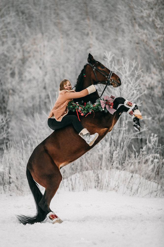 Анастасия и Монреаль, Конное подворье Егоровых, Новосибирск