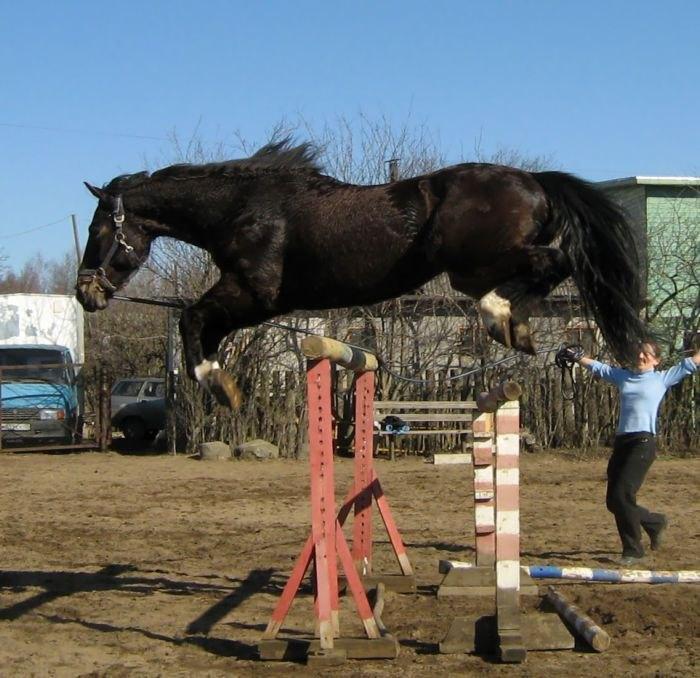 прыжочек