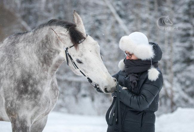 """Зимний фотодень в конном клубе """"Сивка"""""""